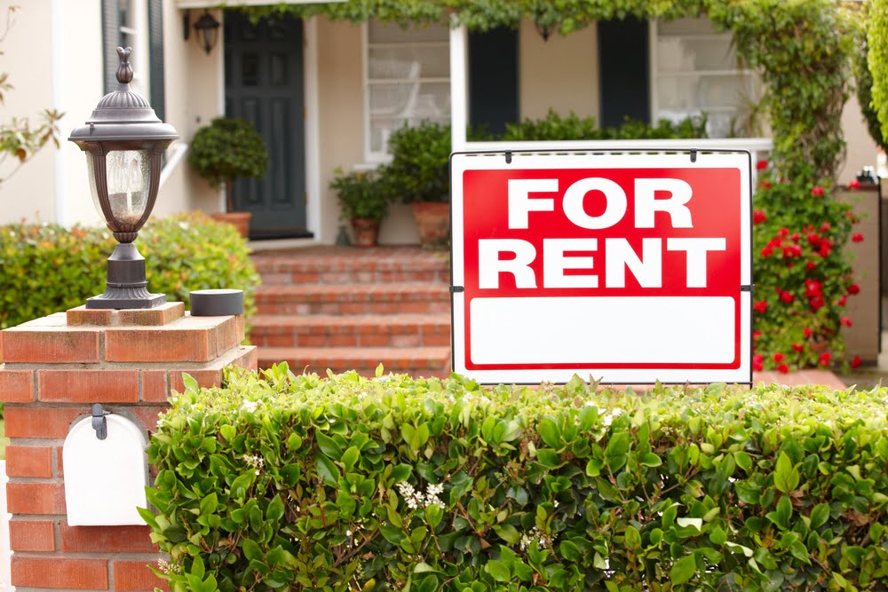 Landlords share their best advice on credit reports, applications, and screening tenants for your rental.